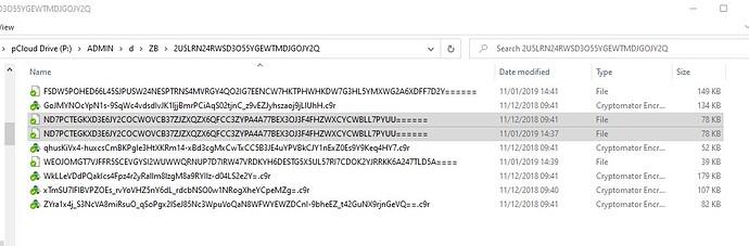 CRYPTOMATOR_Screenshot 2021-09-27 125327